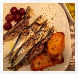 Sardines and Grapes
